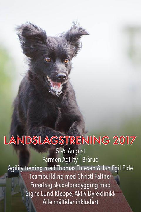 Nordisk samling bilde